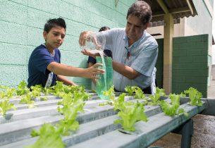Escola de Caiuá produz repelente natural a partir de estudos em sala