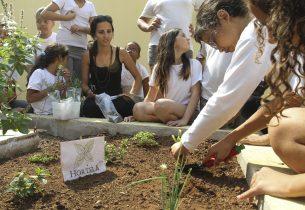 Confira os 30 finalistas da Feira de Ciências da Educação