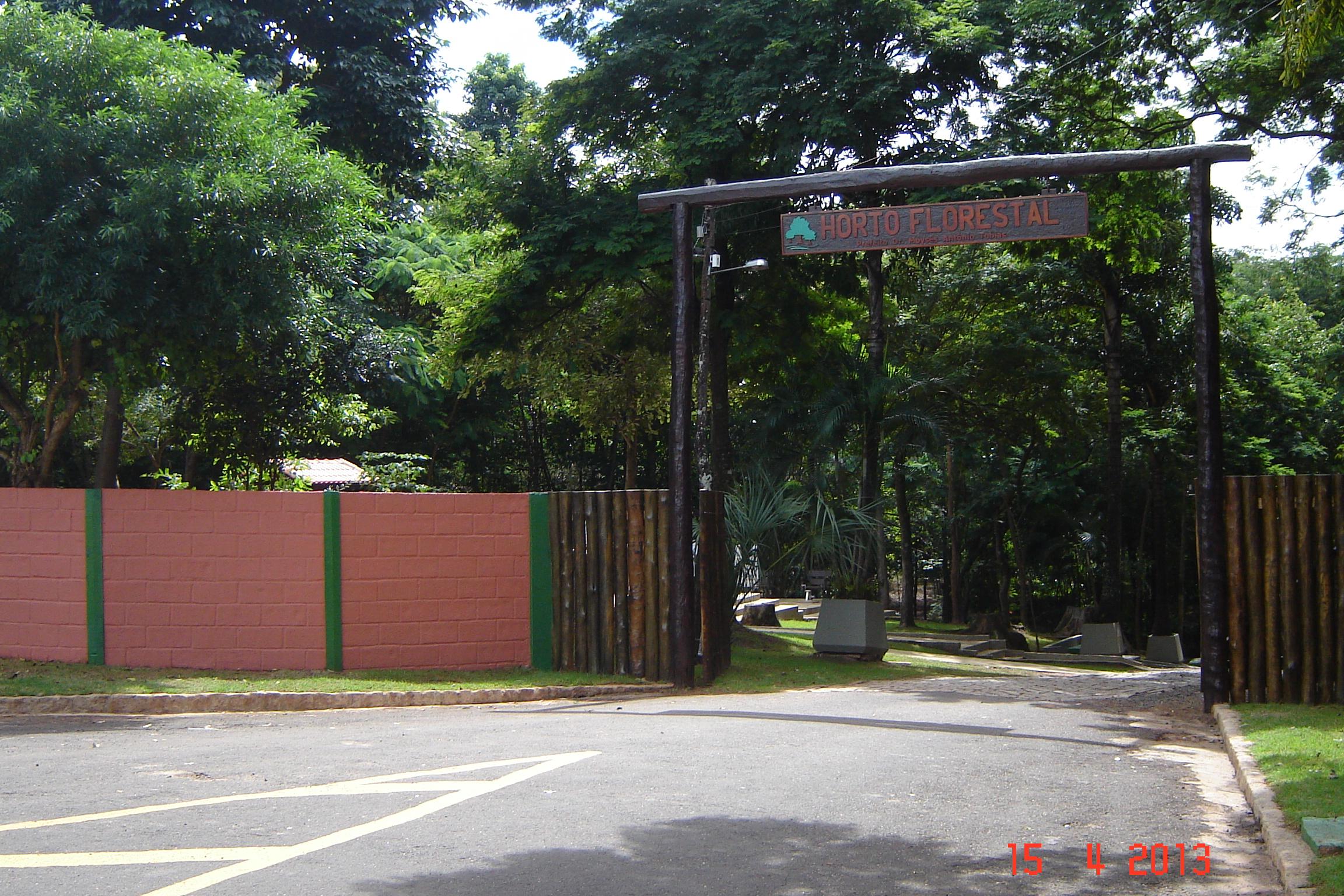 Durante o passeio o visitante pode conhecer algumas árvores do Horto Florestal de Lins